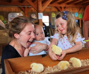 Kids can hang with the barnyard animals at Cherry Crest Adventure Farm. Photo courtesy the farm