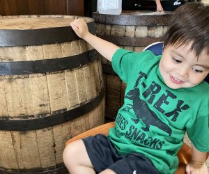 Best Kid-Friendly Beer Gardens and Breweries in and around Chicago: Old Irving Brewing Co.