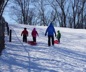 Sledding in the Elmhurst Park District