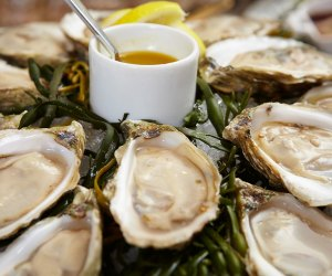 Oceana offers fresh oysters for Christmas dinner takeout