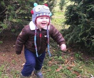 Elwood Pumpkin and Christmas Tree Farm