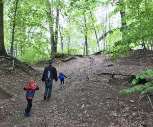 Climb up steep embankments at Crows Woods during a family-friendly South Jersey hike.