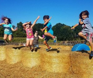 Kids can jump, race, climb, and play farm games for hours after conquering the corn maze in Danvers! Photo courtesy of Connorsfarm.com