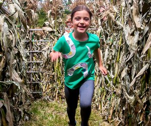 Celebrate the harvest at CORNucopia in Sleepy Hollow. Photo courtesy of the Historic Hudson Valley