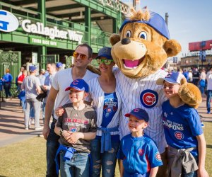 Calling all Chicago Cubs fans! Photo courtesy of Gallagher Way