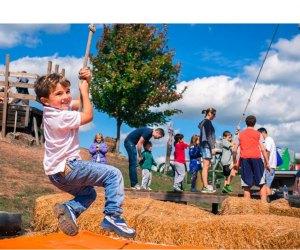 Fall Festival Fun. Photo courtesy of Cox Farms