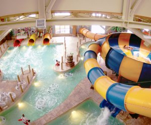 Great Wolf's indoor water park draws kids of all ages to its slides.