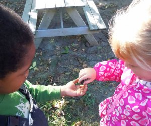 Enjoy some hands-on, outdoor, springtime exploration at CSTL's family-friendly programming. Photo courtesy of CSTL