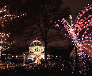 Spectacular holiday lights will shine again at the Bronx Zoo. Photo by Dennis Demello