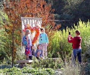 What's Open iin LA Now: Descanso Gardens