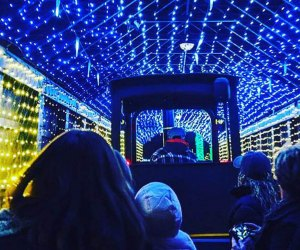 Take an enchanted journey on DiDonato's Magical Holiday Express. Photo courtesy of DiDonato's