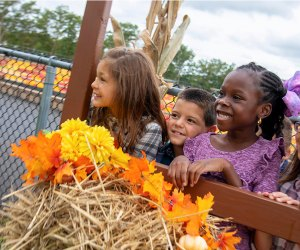 Diggerland's fall festival includes fun rides and seasonal activities. Photo courtesy of  the theme park