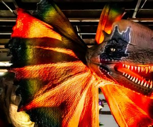 Only one weekend this September to see Dino Stroll in Houston. Photo courtesy of Dino Stroll.