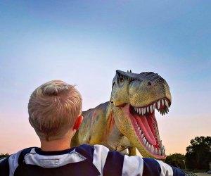 Photo courtesy of Dinosaur Adventure Drive-Thru