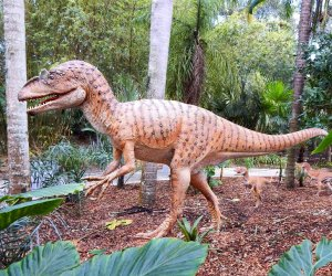 "It's  a ""dinosaur ""invasion at  Leu Gardens. Photo courtesy of the gardens"