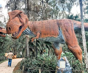 Meet the life-size dinosaurs at Dinosaur World Florida!
