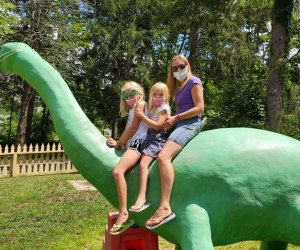 Enjoy the Discovery Museum and Discovery Woods for free through August 23. Photo courtesy of Linda Bauer