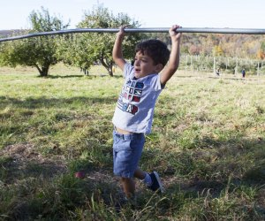 Little boy carries a picking pole to the apple orchards at Dr. Davies Farm