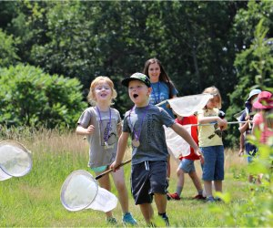 Catch butterflies and make friends with nature in Lincoln. Photo courtesy of Drumlin Farm Camp
