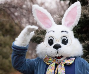 The Easter Bunny is ready for his close up. Photo courtesy of Simon Malls
