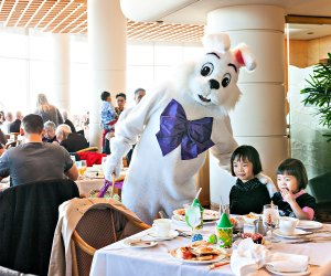 Easter Sunday brunch is made extra-special by a bunny visit. Photo by Rishad Daroo Photography/Flickr/CC BY 2.0