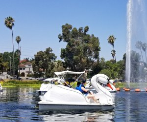 The swan boats at Echo Park Lake are a great workout!