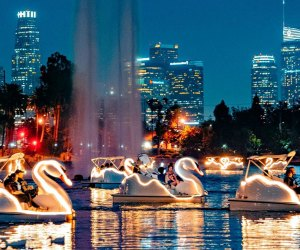 Have an only in La-La Land New Year's Eve with the Echo Park Swan Boats. Photo courtesy of Wheel Fun Rentals