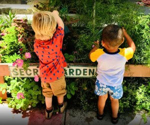 Kids can garden and play while learning a new language (or two!) Photo courtesy of Ecole Claire Fontaine