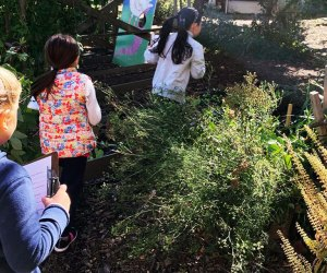 The Edible Shoolyard helps cultivate healthy kids and communities through its hands-on gardening projects. Photo courtesy of the Edible Schoolyard