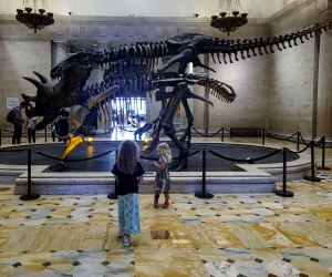 Visiting the Natural History Museum with Kids: The dinosaurs in the entrance