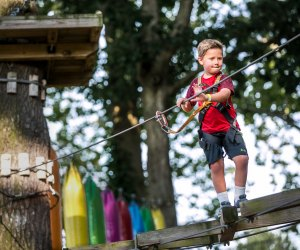 Challenge the rope bridge and zip line at Elmwood Park Zoo. Photo courtesy of the zoo