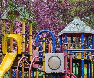 Slides and climbing playground