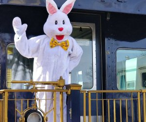 The Easter Bunny is on board for breakfast and lunch on the Essex Steam Train
