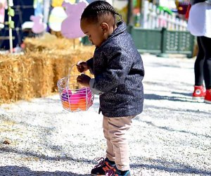 Hit the beach for the Easter Egg Hunt at Jeninkson's Boarwalk. Photo by Fabulous Perks
