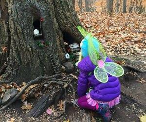 Fairy house on South Mountain Trail