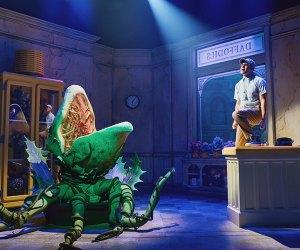 See Jeremy Jordan back on Broadway in Little Shop of Horrors