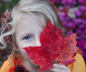 Playing in fall foliage is one of the most beautiful and fun things to do with kids in Boston in the autumn