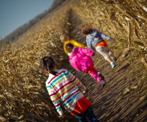 Discover the top things to do with kids this fall in New Jersey