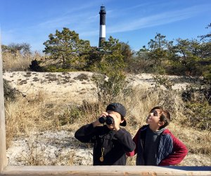 Explore the magic of Fire Island and climb the lighthouse stairs. Photo by the author