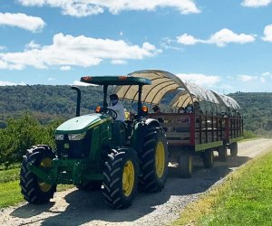 Hop on a tractor for a hayride at FIshkill Farms.