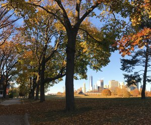 Visitors to Governors Island will now be able to explore fall, winter, and spring on the isle, too. Photo courtesy of the Friends of Governors Island