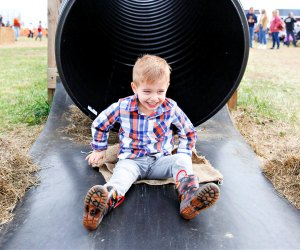 Fall Festival Fun. Photo courtesy of Froehlich's Farm
