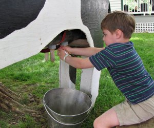 Spring Farm Day at Frying Pan Park. Photo courtesy of Fairfax County Park Authority