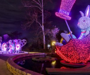 Join Alice, the Red Queen, White Rabbit, and more at Garden Lights Holiday Nights. Photo courtesy of the Atlanta Botanic Gardens