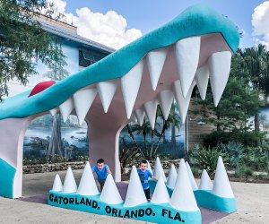 Gatorland. Photo by Charlotte Blanton