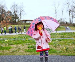 Celebrate Earth Day at Grace Farms. Photo by Vanessa Van Ryzin