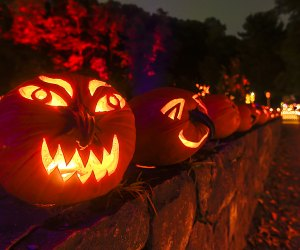 The Great Jack O'Lantern Blaze returns to Van Cortlandt Manor for its 17th season, debuting September 17. Photo by Tom Nycz/courtesy of the Historic Hudson Valley