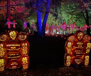 Discover the breathtaking displays at the Great Jack-O-Lantern Blaze. Photo by the author