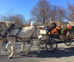 Wagon rides are part of the fun at the Greenwich Reindeer Festival.