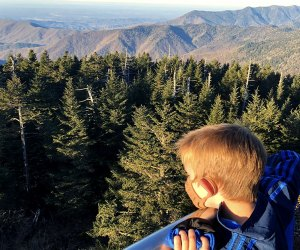 Climb to the highest point in Tennessee at Clingmans Dome in Great Smoky Mountains National Park.